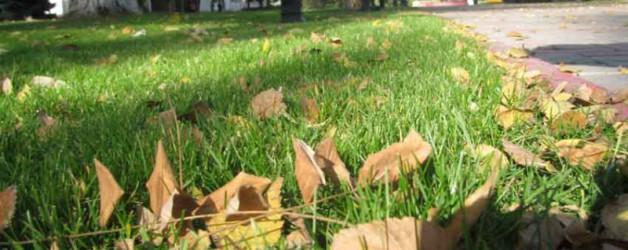 Осень в Керчи