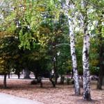 kerch-osen-foto-kerchanin_