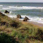 Осовины_пляж Чайка
